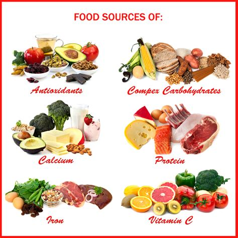 protein food sources how important is a varied diet and tips