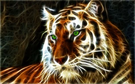 tiger backgrounds tiger wallpapers best wallpapers