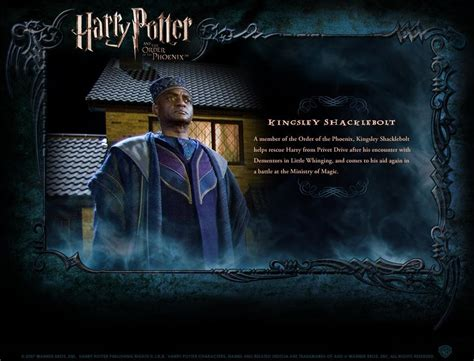 biography of harry potter hp bio harry potter movies photo 1759581 fanpop