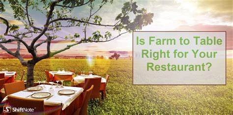 farm to table farm to table restaurant trend is it right for you