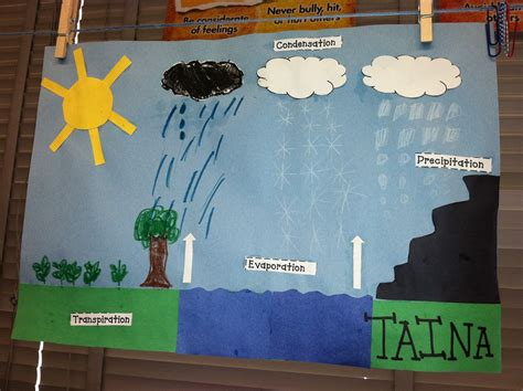 water and water cycle on