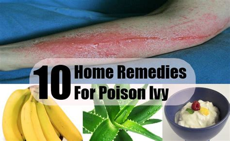 Home Remedies For Poison Oak by Top 10 Home Remedies For Poison