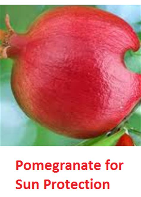 Medicinal Uses Of Pomegranate Anar by Health Benefits Of Pomegranate Fruit Anar Fruit Juice