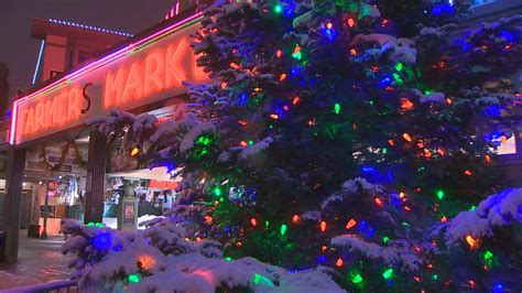 seattle zoo lights lovely zoo lights seattle decoration home gallery image