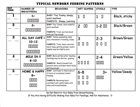 baby feeding chart newborn formula feeding chart feeding schedule amount