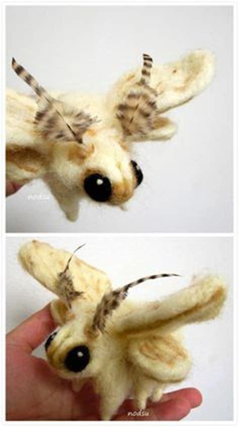 poodle moth lifespan poodle moth vlinders butterflies