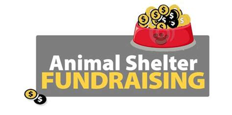 Fundraising Letter For Animal Shelter 1st Issue Of 2013 What Important Change Happens In 2013