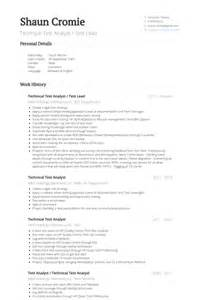 Lead Analyst Sle Resume by Test Analyst Resume Sles Visualcv Resume Sles Database