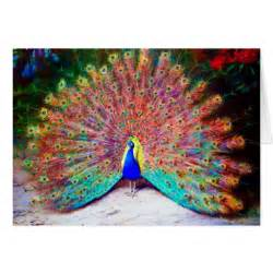 colorful peacock colorful vintage peacock painting card zazzle
