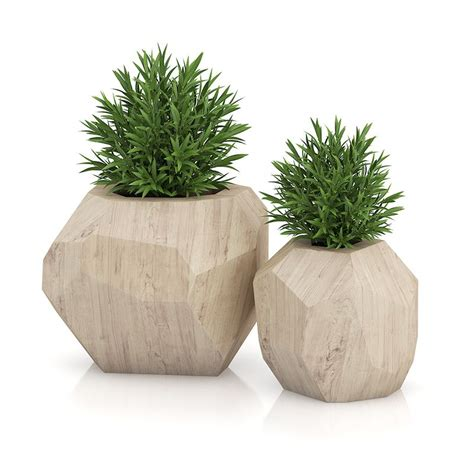 Wooden Plant Pot two plants in modern wooden pots plant pots