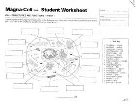 blank plant cell worksheet abitlikethis