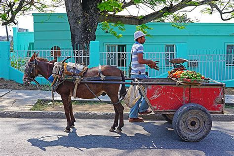 can americans travel to cuba how to legally travel to cuba as an american dftm travel