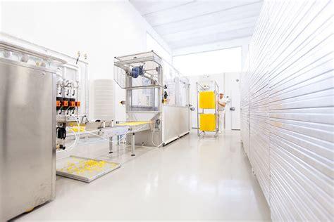 produzione alimenti per celiaci wellfood stabilimento produzione pasta senza glutine