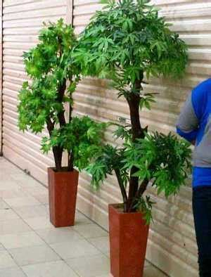 Jual Lukisan Hias Simetris Kaskus pohon artifisial imitasi tanaman hias pohon plastik