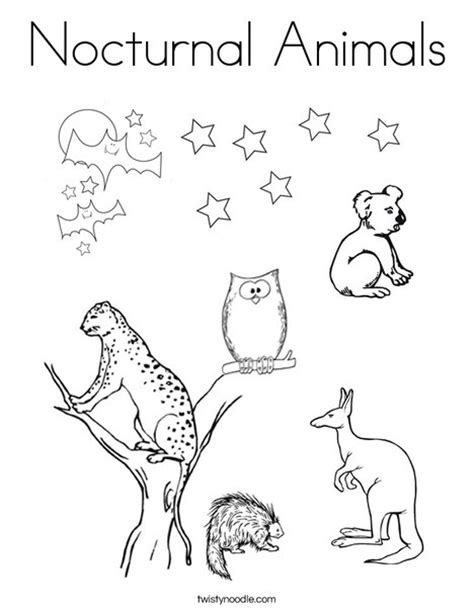 Printable Nocturnal Animal Book | nocturnal animals coloring page twisty noodle