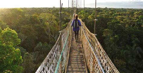 amazon travel ecuador tourist destinations