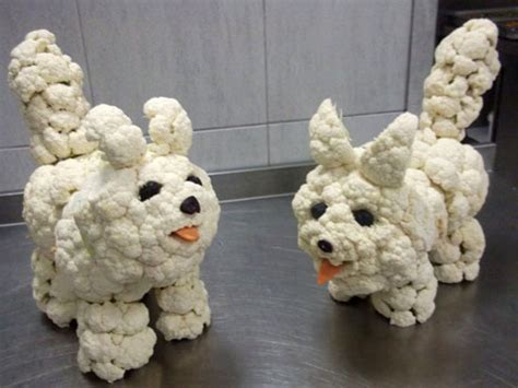 can dogs cauliflower fruit and vegetable carvings for