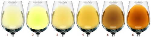 chardonnay color savory or fruity understanding types of white wine by color