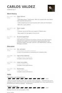 Travel Advisor Sle Resume by Sales Advisor Resume Sles Visualcv Resume Sles Database
