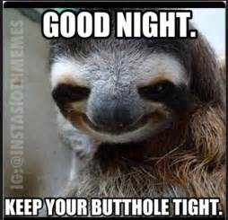 Goodnite Meme - good night creeper sloth pinterest