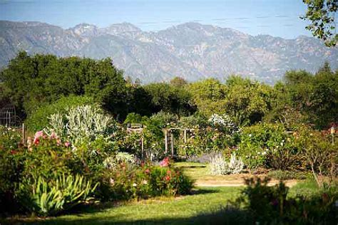 most beautiful wedding locations in southern california descanso gardens southern california weddings