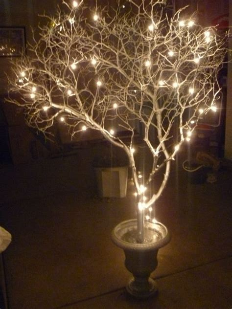 Lighted Trees by Best 25 Lighted Trees Ideas On Potted Trees Wedding Trees And Weddings