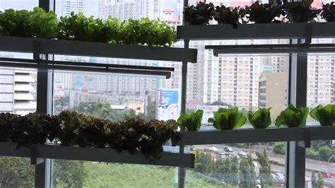 Media Tanam Pak Tani kebun hidroponik di dalam gedung pertama di indonesia