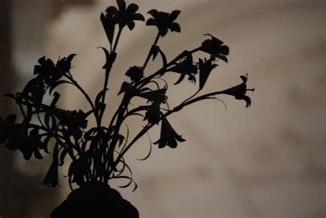 imagenes de flores marchitas fragmentos de un diario discontinuo quot se me acabo el