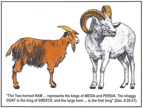 goats and rams how do you say goat in your language page 3