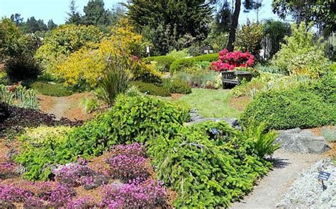 Botanical Gardens Fort Bragg Ca 1000 Ideas About Fort Bragg California On Pinterest Fort Bragg California And Northern