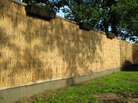 bücherregal 2 50 m hoch sichtschutz 2 50 m hoch gut bambus sichtschutz