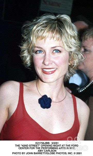 how to get cut for amy carlson short haircut best 20 amy carlson ideas on pinterest blue bloods