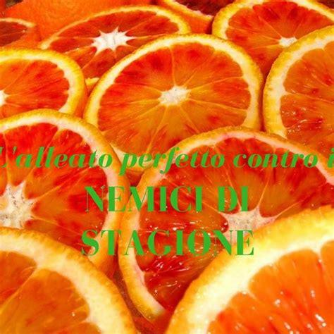 alimentazione bio alimentazione bio arance il frutto anti age ambiente