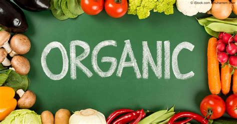 what is in food organic food what research says about the health benefits