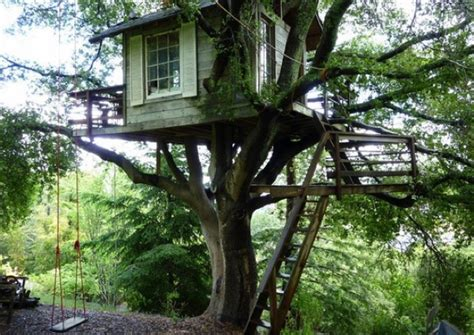 tiny tree house tiny treehouse overlooking san francisco bay