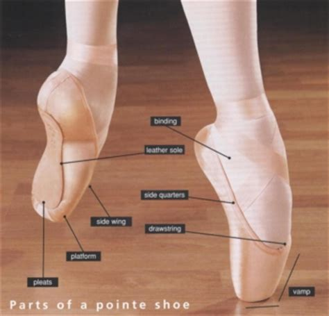 what is the meaning of slippers ballet shoes and pointe shoes jamieson school of