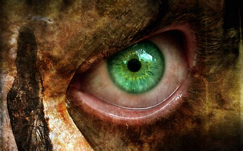 wallpaper of green eyes green eyes wallpaper 158955