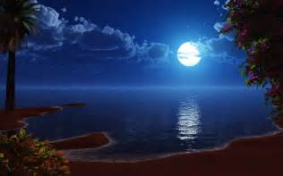 free download beach at night backgrounds pixelstalk net