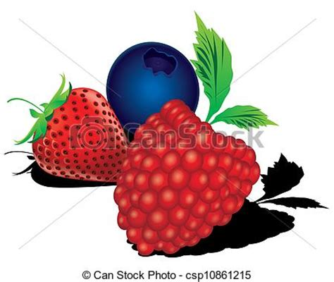 berry design vector clip of mixed berries vector the abstract of mixed berries csp10861215