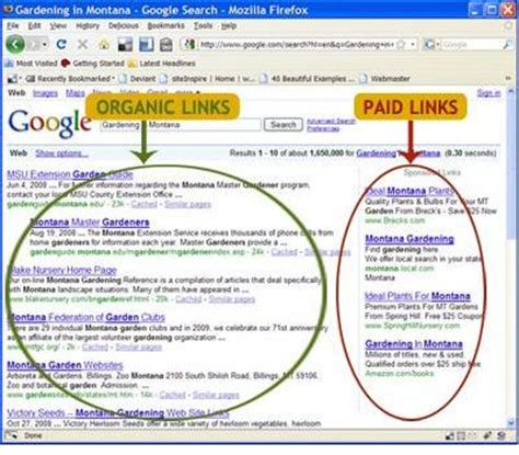 Free Search Engines For S Information Organic Search Engine Optimization