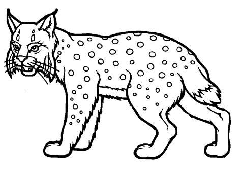 imagenes de animales infantiles dibujos para colorear dibujos de tigres tattoo design bild