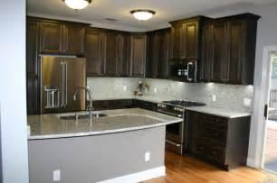 Charcoal Kitchen Cabinets So Ta Charcoal Kitchen Traditional Kitchen Ta By Fusion Cabinets Inc