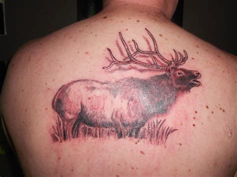 bull elk tattoo designs 17 best ideas about elk on deer drawing