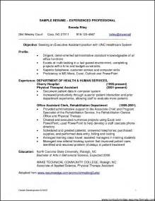 Professional Exles Of Resumes by Doc 7821011 Professional Resume Sles For It