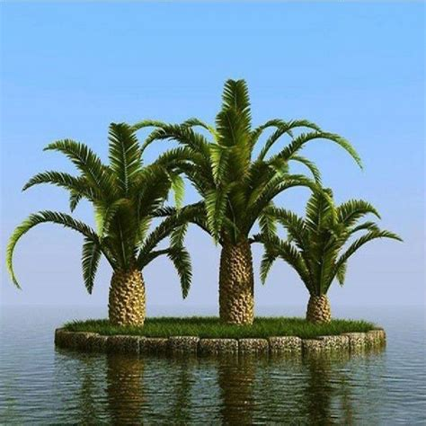 outdoor palm tree l post 23 best images about metal palm trees on pinterest