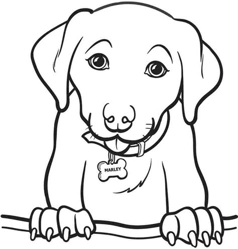 cool coloring pages of dogs cool dog coloring pages for kids 11 1870 lab dog coloring