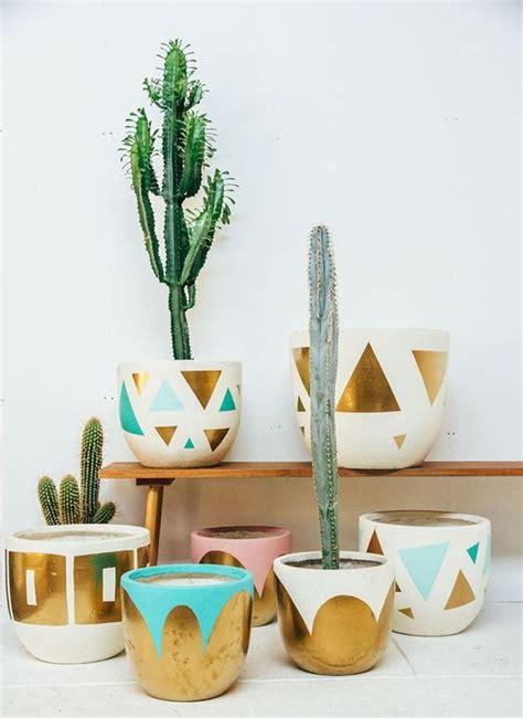 cute cactus pots gardens beautiful and l wren scott on pinterest