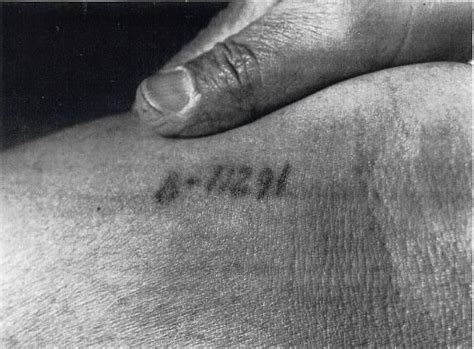 auschwitz tattoo prisoners quot tattoos quot a collection of ideas to try