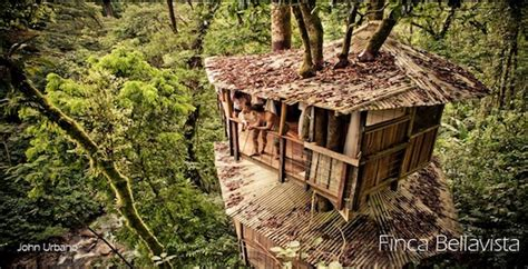 treehouse community eco villages and beyond 10 communities across the world