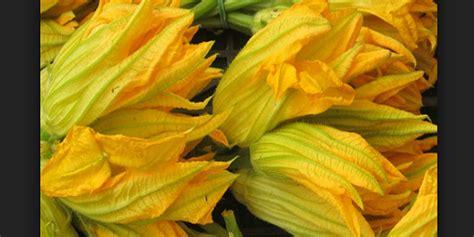 come si puliscono i fiori di zucca coma vanno lavati i fiori di zucca tutti i passaggi per